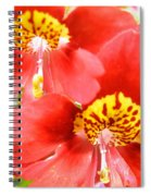 Leapord Skin Pillbox Hat Spiral Notebook
