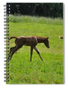 Learning To Run Spiral Notebook