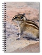 Least Chipmunk #2 Spiral Notebook