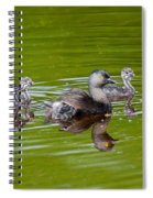 Least Grebe And Young Spiral Notebook