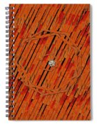 Leather In Love With A Lion Spiral Notebook