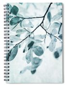 Leaves In Dusty Blue Spiral Notebook