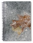 Leaves In Ice Spiral Notebook