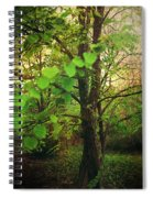 Leaves In My Hair Spiral Notebook