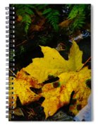 Leaves In Still Shallows Spiral Notebook
