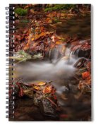 Leaves In The Creek Spiral Notebook