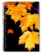Leaves Of Maple Spiral Notebook