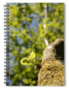 Leaves Spiral Notebook