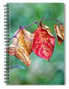Leaving Summer Behind Spiral Notebook