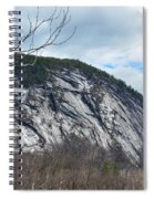 Ledge In New Hampshire Spiral Notebook