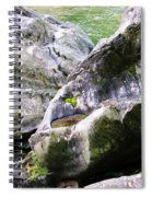 Ledge Worn Smooth By Centuries Of Water And Ice Spiral Notebook