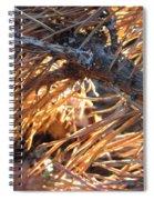 Left For Dead Spiral Notebook