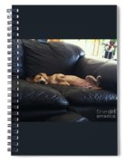Leg Up Spiral Notebook