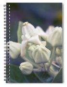 Lei Pua Kalaunu - Crown Flower - Calotropis Gigantea - Asclepiad Spiral Notebook
