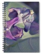 Lei Pua Kalaunu - Crown Flower - Calotropis Gigantea Spiral Notebook