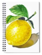 Artz Vitamins The Lemon Spiral Notebook