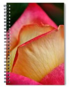 Lemon Raspberry Rosebud Spiral Notebook