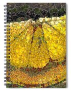 Lemon Slice Spiral Notebook