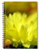 Lemon Whispers Spiral Notebook