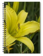 Lemon Yellow Daylily Blossom Spiral Notebook