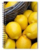 Lemons 01 Spiral Notebook
