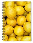 Lemons 02 Spiral Notebook