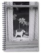 Lenton Boulevard Spiral Notebook