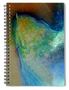 Leo Rising Spiral Notebook