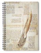 Leonardo: Anatomy, 1510 Spiral Notebook