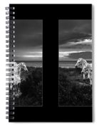 Leopard Appaloosa  Spiral Notebook