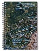 Leopard Frog Spiral Notebook