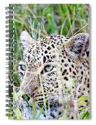 Leopard In The Grass Spiral Notebook