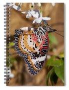 Leopard Lacewing Butterfly Dthu619 Spiral Notebook