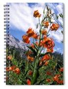 Leopard Lilies Below Lassen Peak Spiral Notebook