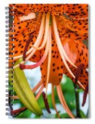 Leopard Lily 2 Spiral Notebook