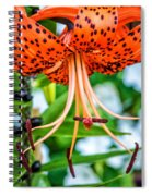 Leopard Lily Spiral Notebook