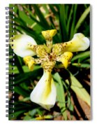 Leopard Orchid Spiral Notebook