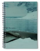 Leopard Seal Hauled Out Spiral Notebook