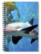 Leopard Shark Spiral Notebook