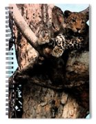 Leopard Spotted Spiral Notebook