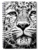 Leo's Portrait Spiral Notebook
