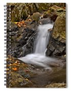 Lepetit Waterfall Spiral Notebook