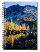 Leprechaun Lake Larch Trees Spiral Notebook