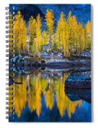 Leprechaun Tamaracks Spiral Notebook