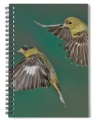 Lesser Goldfinch Pair In The Air Spiral Notebook