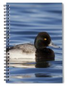 Lesser Scaup Spiral Notebook