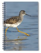 Lesser Yellowlegs Spiral Notebook