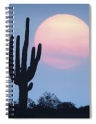 Let Beauty Awake Spiral Notebook