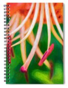Let It All Hang Out - Paint Spiral Notebook