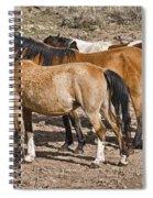 Let Me In Spiral Notebook